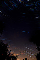 Star Trails Looking South. Composite of 112 images taken between 01:00 and 01:59 with a Nikon D3x camera and 14-24 mm lens (ISO 400, 14 mm, f/4, 30 sec).
