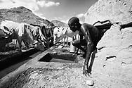 Three herdsmen, Leo Learamo (top), Natadowa Leshargole (middle), Logira Lokuria (bottom) pull water from a drying well in the Ngurunit riverbed.