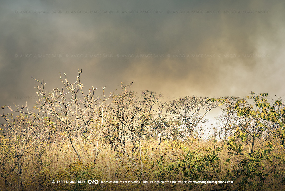 Queimadas perto das Pedras Negras de Pungo Andongo na província de Malange na época seca (cacimbo). Angola