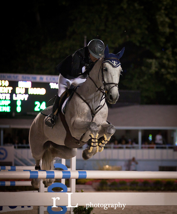 Top Equestrian Sport Horses at Devon Grand Prix