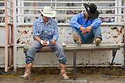 From left: Brian Brown and Tanner Butner get ready to ride before the start of the CPRA Rodeo at the Boulder County Fairgrounds on Sunday. Go to timescall.com for more photos.<br /> <br /> Matthew Jonas / Staff Photographer Aug. 2, 2015