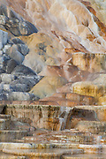 Palette Springs in Yellowstone National Park