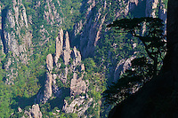 Chine, Province de Anhui, le parc national des Huangshan, patrimoine mondial de l'UNESCO. // China, Anhui province, national park of Huangshan mountain