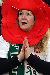 An England fan in the stands wearing a rose hat during the Guinness Six Nations match at the Aviva Stadium, Dublin.