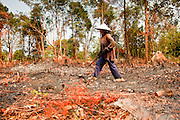 09 APRIL 2010 - NAKHON, PHANOM, THAILAND: UDOM, a woman in her 60's, burns brush out of her land to prepare it for planting potatoes. She said this is the first year she's planted potatoes and she is doing so because of the drought gripping the region. Potatoes require less water than rice, her preferred crop. The region is in the midst of a record setting drought and the Mekong River is at its lowest point in nearly 50 years, setting up an environmental disaster the region has never seen before. Many of the people who live along the river farm and fish. They claim their crops yields are greatly reduced and that many days they return from fishing with empty nets. The river is so shallow now that fisherman who used to go out in boats now work from the banks and sandbars on foot or wade into the river. In addition to low river levels the Isan region of Thailand is also in the midst of a record drought and heat wave. Farmers have been encouraged to switch from rice to less water intensive crops and to expect lower yields. Farmers here rely more on rain fall than irrigation to water their crops.       PHOTO BY JACK KURTZ