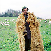 A shepherd wearing a sheepskin cloak with a flock of sheep and lambs at a sheepfold, Lunca Ilvei, Romania. Each flock of around 500 sheep is based at a stana or sheepfold, a very basic hut in a clearing with a strunga or milking enclosure of hurdles which is moved every few weeks in good weather or weekly in bad.