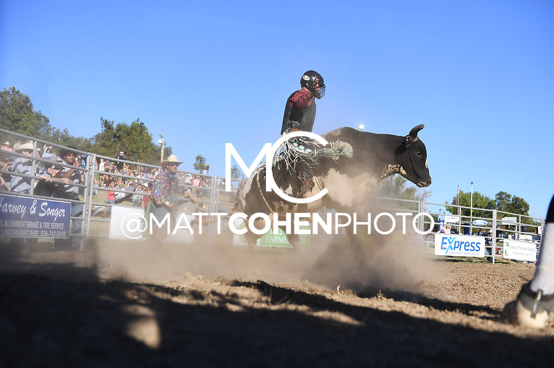 Connor McClure / 517 of Flying U, Marysville 2018<br /> <br /> <br /> UNEDITED LOW-RES PREVIEW<br /> <br /> <br /> File shown may be an unedited low resolution version used as a proof only. All prints are 100% guaranteed for quality. Sizes 8x10+ come with a version for personal social media. I am currently not selling downloads for commercial/brand use.