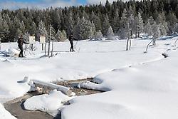 Cross Country Skiing, Yellowstone