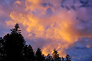 Sunset in the Canadian Rocky Mountains, Kootenay National Park, British Columbia, Canada