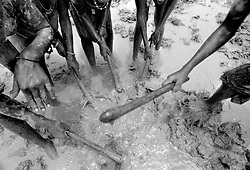 Soil preparation for growing rice is labor intensive. Girls work in the fields with hand hoes because there are no tractors or machinery in this remote village.