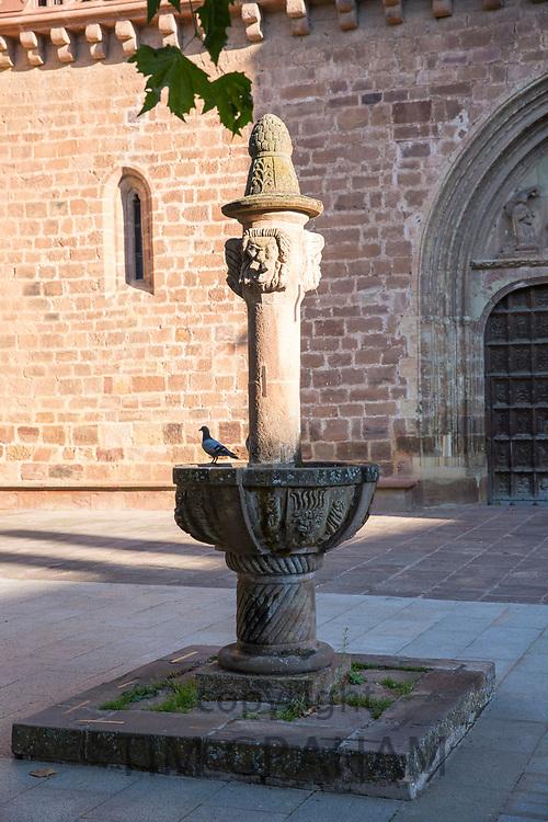 Pigeon in a fountain in courtyard of Iglesia Church Santa Maria La Major in Ezcaray, La Rioja, Spain