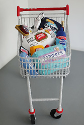 A shopping trolley by felt artist Lucy Sparrow during a press preview of her exhibition Shoplifting, which showcases the most shoplifted items in the UK, at the Lawrence Alkin Gallery in central London.