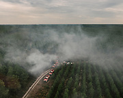 Views from inside the helicopter of the Fire and Rescue Departmental Service. Spotting pine trees forest fires and analysing evolution of fire to best direct firefighters on the ground as well as indicating locations to drop water for firefighting planes.<br /> Bordeaux, France.