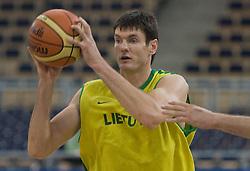 Darjus Lavrinovic of Lithuania during the practice session, on September 11, 2009 in Arena Lodz, Hala Sportowa, Lodz, Poland.  (Photo by Vid Ponikvar / Sportida)