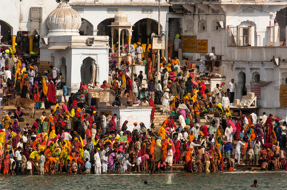 The devout who have come to the Sarovar or Pushkar Lake with it's 52 Ghats to bath. Pushkar, Rajasthan. INDIA<br /> People from all races who have mingled in Rajasthan come here dressed in their finest clothes and jewellery. The most prominant colour saris and turbins seen during the pilgrimage are yellow, orange and red and white. Rajasthani men are famous for their elaborate and often very large turbins and moustaches.<br /> The town of Pushkar is one of the holiest centers of Hinduism and houses one of the few Brahma Temples in India. It is one of the 5 essential pilgrimage centers which a Hindu must visit in his lifetime along with Badrinath, Puri, Rameshwaram and Dwarka. The 12 day camel and livestock fair culminates in a religious Hindu pilgrimage and reaches a crescendo on the night of the full moon (Purnima) when pilgrims take a dip in the holy lake.  <br /> Pushkar camel and livestock fair takes place in the Hindu month of Kartik (October / November) ten days after Diwali (Festival of Lights). Pushkar has always been the the region's main market for herdsman and farmers buying and selling camels, horses, indigenous breeds of cattle and even elephants. Over the years this annual trading event has increased in volume to become one of the largest in Asia. Temporary tents and campsites suddenly appear to accomodate the thousands of pilgrims, villagers and tourists. Entertainers and contests abound and a festive funfair atmosphere prevails over Pushkar during the Mela's 2 week duration. Thousands of men come first with their camels, horses and cattle and camp on the dunes to transact business. 3 days before the full moon the women arrive beautifully attired for the pilgrimage.