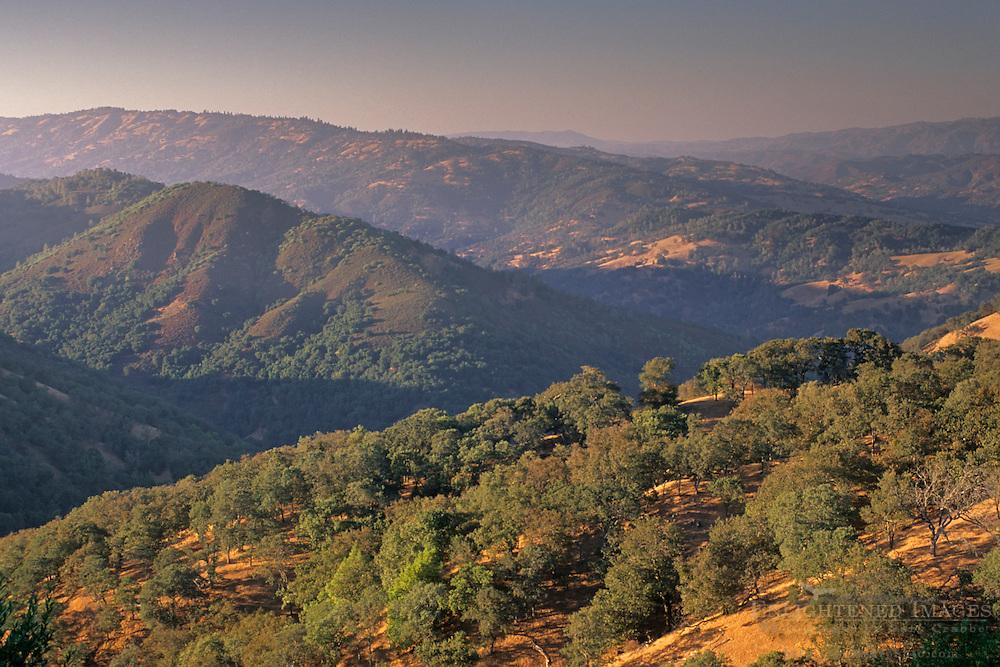 Oak trees and hills above Coyote Creek from Palassou Ridge, Santa Clara County, California