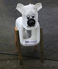 Shorwell Sheep