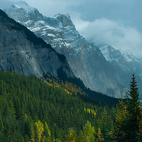 Cars drive below the Canadian Rockies on the Icefields Parkway.