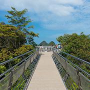 Suspension bridge walkway on the top of Mount Mat Cincang. Langkawi, Kedah, Malaysia, South-East Asia, Asia