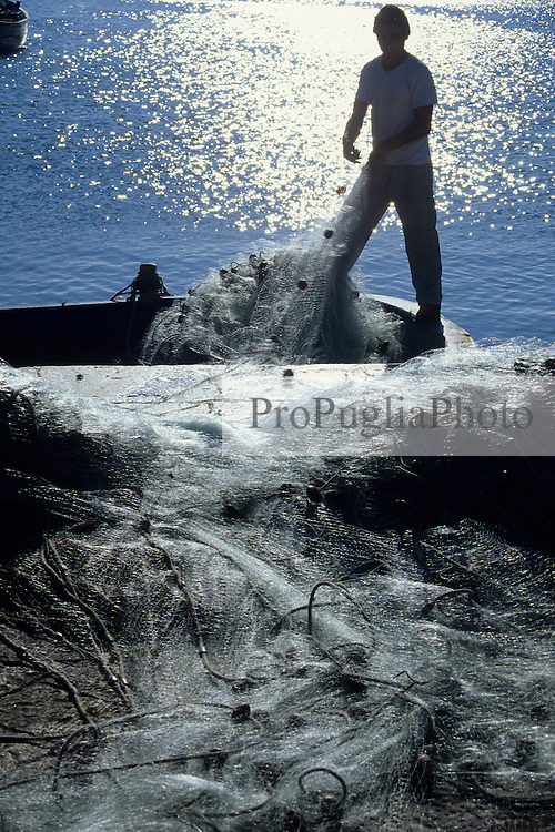 Fisherman in the Gallpipoli harbour