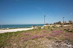 Il porto di Capojale è costituito dal prolungamento del canale di Capojale, che collega il Lago di Varano con il Mare Adriatico..Tale prolungamento è costituito da due moli lunghi rispettivamente 950m e 600m. Il molo di Levante risulta internamente banchinato..I fondali sono variabili da 1 a 2 metri e sono soggetti a interrimento..L'approdo è frequentato da pescherecci e imbarcazioni similari...Fonte testo  http://it.wikipedia.org/wiki/Capojale