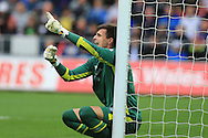 Eldin Jakupovic , the Hull city goalkeeper gives his instructions as he lines up a defensive wall. .Premier league match, Swansea city v Hull city at the Liberty Stadium in Swansea, South Wales on Saturday 20th August 2016.<br /> pic by Andrew Orchard, Andrew Orchard sports photography.