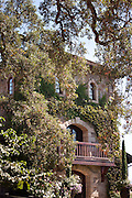 Old vine covered winery in Napa Valley, California