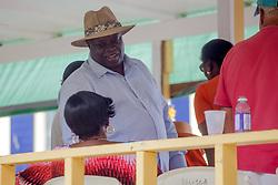 Governor Kenneth Mapp greets carnival goers at the Seniors' Stand.  Carnival 2017 Adults' Parade.  Charlotte Amalie.  St. Thomas, USVI.  29 April 2017.  © Aisha-Zakiya Boyd