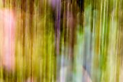 Abstract Patterns & Textures, Alaska