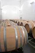 Oak barrel aging and fermentation cellar. Herdade das Servas, Estremoz, Alentejo, Portugal