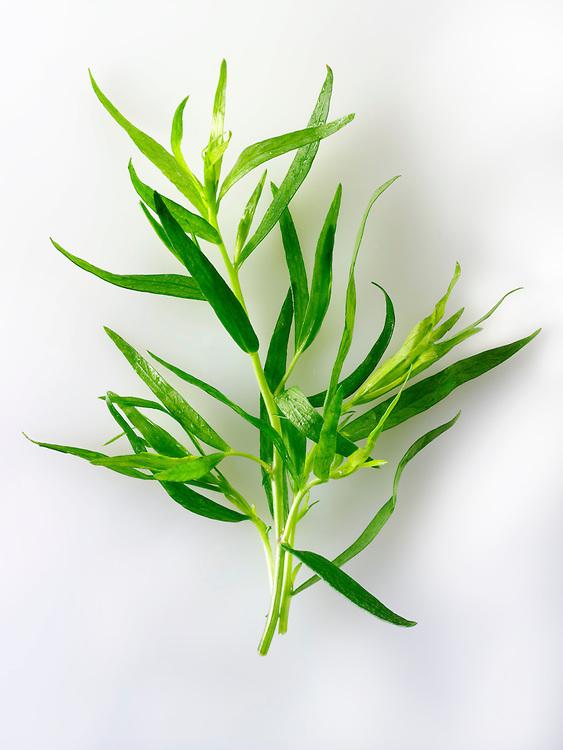 Fresh Tarragon leaves
