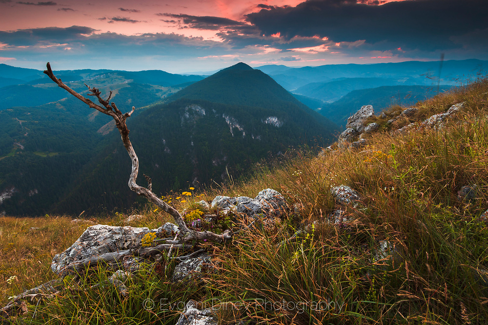 Rhodope Mountain ridge at summertime