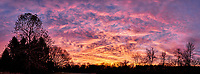 Colorful Clouds at Dawn Panorama. Composite of seven images taken with a Fuji X-T1 camera and 16 mm f1.4 lens (ISO 200, 16 mm, f/4, 1/30 sec). Raw images processed with Capture One Pro and AutoPano Giga Pro.