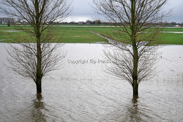 Nederland, West Maas en Waal, 26-2-2020 Het waterpeil in de rivier de Waal. Uiterwaarden zijn ondergelopen, staan nog steeds onder water .  Foto: Flip Franssen