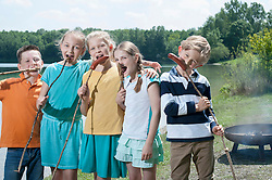 Group of friends eating sausages with breads at lakeside, Bavaria, Germany