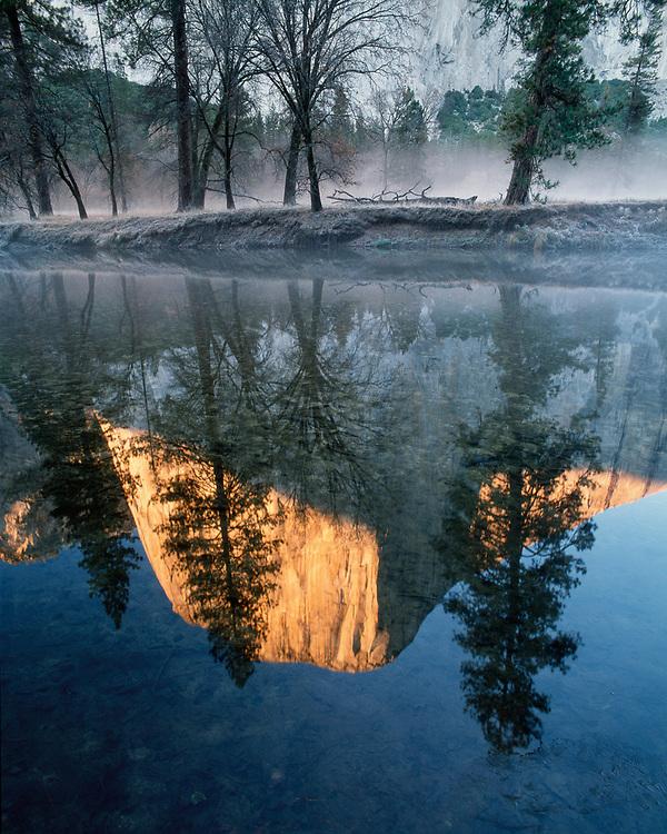 Morning reflection of El Capitan on the Merced River, Yosemite National Park, California, USA