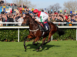 Dazzling Dan ridden by Martin Harley wins the Download The Marathonbet App Cock O'The North EBF Maiden Stakes race during Marathonbet November Handicap Day at Doncaster Racecourse.