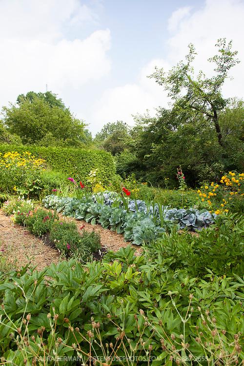 Kitchen and cutting gardens