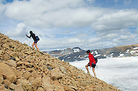Hikers above Reef Icefield near Snowbird Pass, Mt. Robson Provincial Park British Columbia Canada