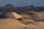 Sand dunes, Skeleton Coast National Park, Namibia.