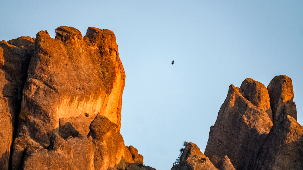 More condors soarking among the spires.