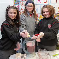Ailish Crowe, Theresa Brew and Lillie Horan making smoothies for the Jessies Fruity Express showcase day at Ennis National school