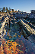 A unique landscape of beautifully striped bedrock descends from Pemaquid Light to the Atlantic Ocean. Pemaquid Point Lighthouse was built in 1835 and commemorated on Maine's state quarter (released 2003). Visit Lighthouse Park at the tip of Pemaquid Neck in New Harbor, near Bristol, Lincoln County, Maine, USA. From Damariscotta on bustling US Highway 1, drive 15 miles south on Maine Route 130 to the park. The keeper's house (built 1857) is now the Fishermen's Museum at Pemaquid. Geologic history: Silurian Period sediments laid down 430 million years ago were metamorphosed underground into a gneiss 360-415 million years ago, and intruded by molten rock which cooled slowly, creating the park's exposed metamorphic gray rocks with dikes of harder, white igneous rock. Underground heat and pressure tortured and folded the rock layers into the striking patterns that are now pounded and polished by the sea and rough weather. The panorama was stitched from 7 overlapping photos.