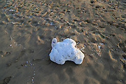 Pollution polystyrene breaking up shed onto beach Nilavelli beach, near Trincomalee, Eastern province, Sri Lanka, Asia