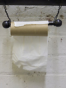 last sheet of toilet paper on roll