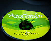 Indoor Hydroponic Garden: Thyme Day 10. Image taken with a Fuji X-T2 camera and 80 mm f/2.8 macro lens