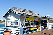 Snack Shack and Souvenirs on the Pier SC