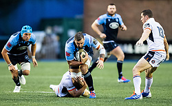 Josh Turnbull of Cardiff Blues under pressure from George Taylor of Edinburgh Rugby<br /> <br /> Photographer Simon King/Replay Images<br /> <br /> Guinness PRO14 Round 2 - Cardiff Blues v Edinburgh - Saturday 5th October 2019 -Cardiff Arms Park - Cardiff<br /> <br /> World Copyright © Replay Images . All rights reserved. info@replayimages.co.uk - http://replayimages.co.uk