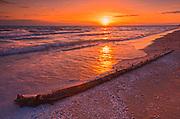 Shells and log on sandy beach on Lake Ontario and sunset<br />Sandbanks Provincial Park<br />Ontario<br />Canada