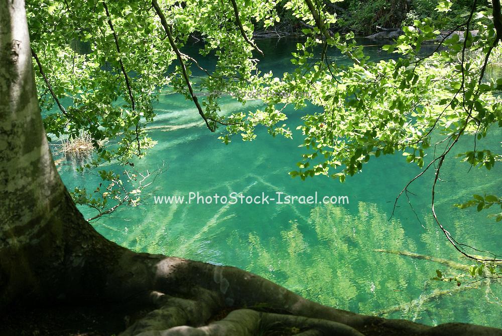 Croatia, Plitvice Lakes National Park